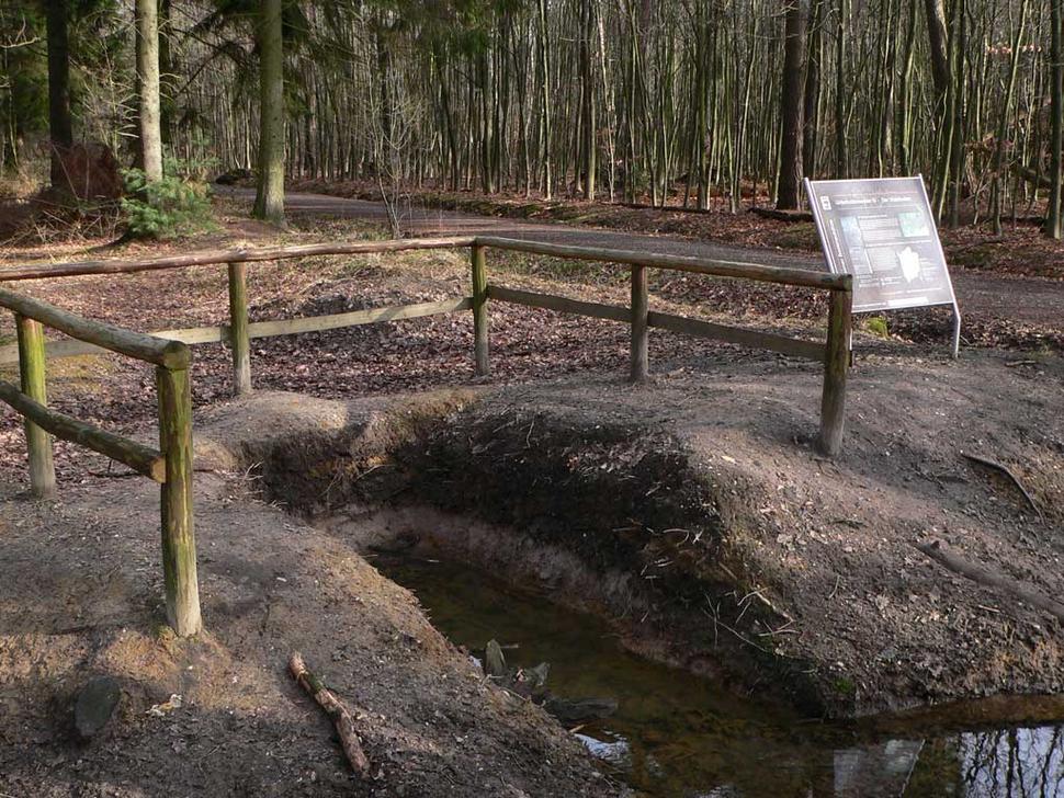 Bodenschätze, Mülheim (Foto: Biostation westl. Ruhrgebiet)