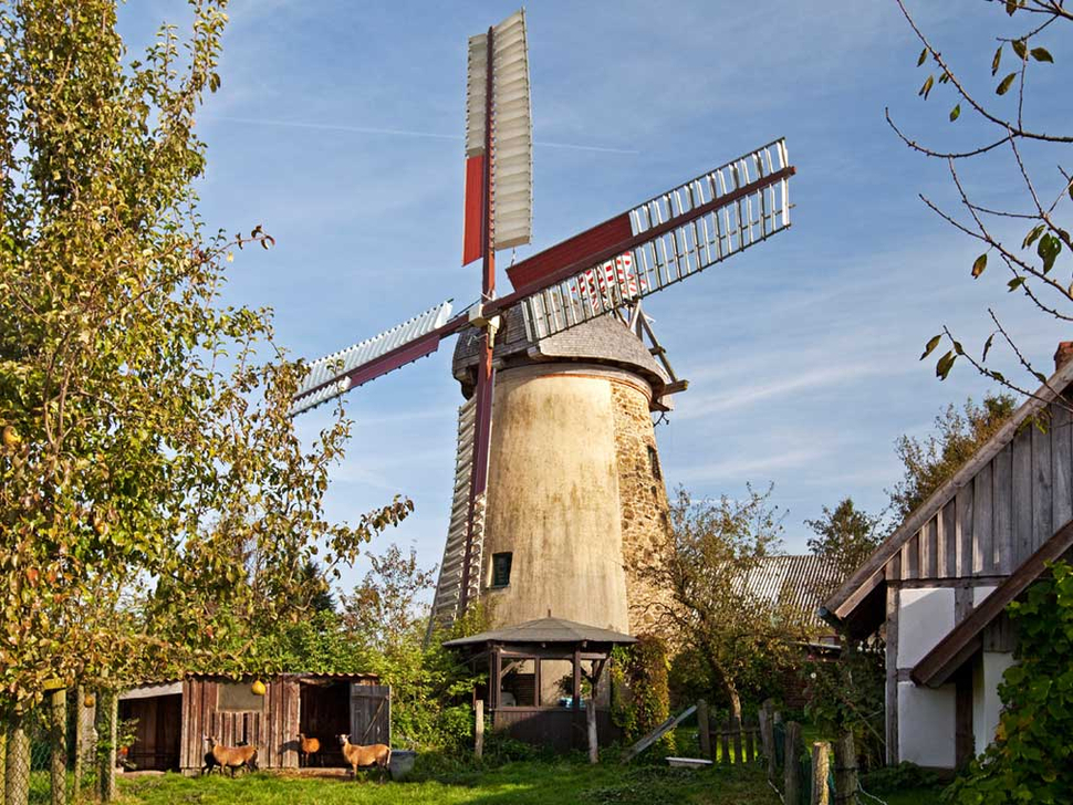 Windmühle Brink, Kalletal (Foto: Stefan Ziese)