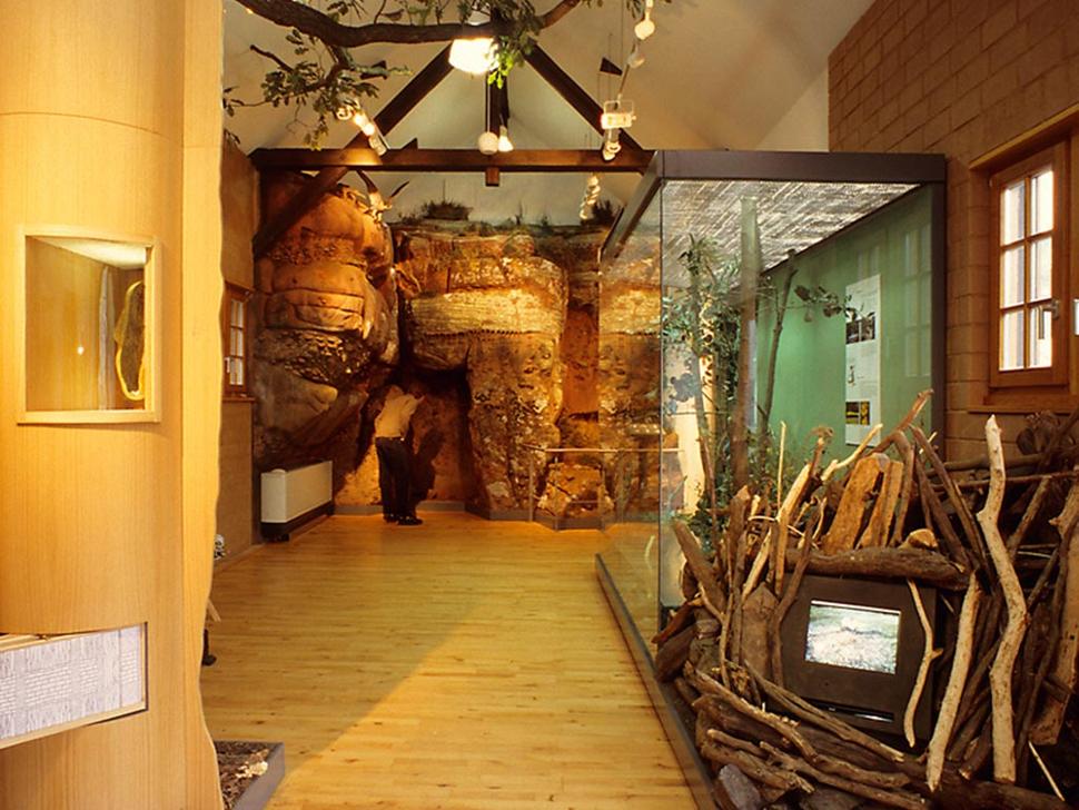 Naturkundliche Ausstellung, Nideggen (Foto: Werner Stapelfeldt)