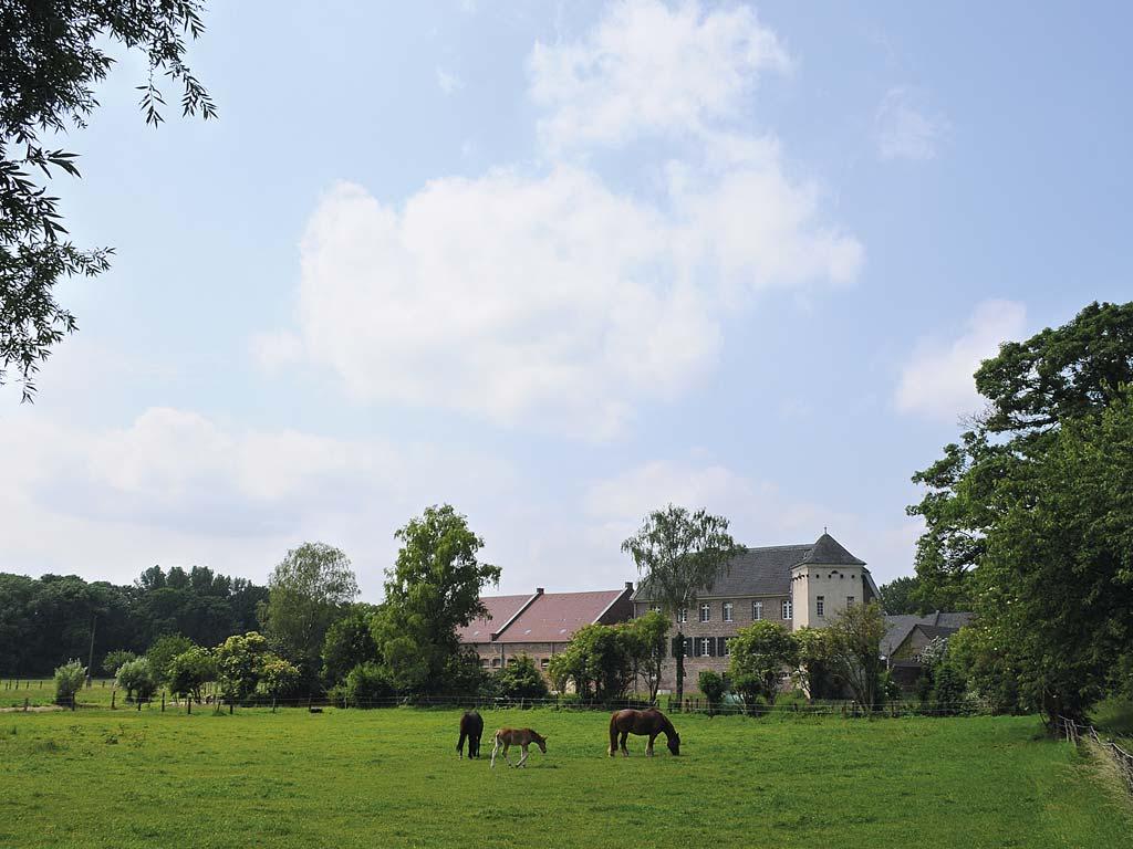 Urdenbacher Kämpe (Foto: Joschka Meiburg)